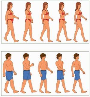 går upp i vikt