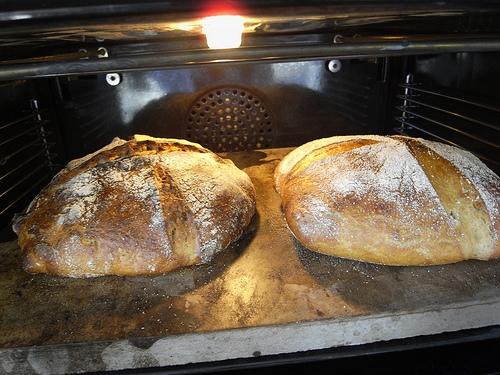 Är surdegsbröd nyttigare än vanligt bröd