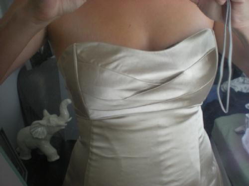 The Dress! - Bild 1