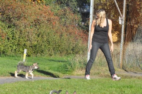 Jag och hundarna! - Bild 3